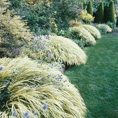 Best Plants for Landscape Edging ▇  #Home ❀ #Landscape #Design via Christina Khandan, Irvine California ༺ ℭƘ ༻
