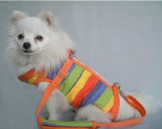 Orange Color Strips Pet sling Dogs Cats Carriers Travel Bag-Large - http://www.thepuppy.org/orange-color-strips-pet-sling-dogs-cats-carriers-travel-bag-large/