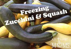 Freezing Zucchini and Squash