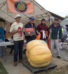 Allardt Pumpkin Festival & Giant Pumpkin Weigh-off -  Record-breaking pumpkins!