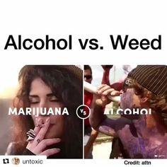 "5,008 Me gusta, 126 comentarios - ☁Chommy Tong☁ (@budsbabesbongs) en Instagram: ""Tag someone to spread the news! 👇👇👇 . . . #420 #cannabis #weed #weedstagram #ganja #highsociety…"""