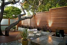 Cheap And Easy Tips: Garden Fence Online Front Yard Iron Fence Ideas.Garden Fence U Post Privacy Fence Nwa.Garden Fence Value. Modern Front Yard, Small Front Yard Landscaping, Front Yard Design, Modern Fence, Modern Landscaping, Landscaping Ideas, Modern Planting, Inexpensive Landscaping, Backyard Garden Design