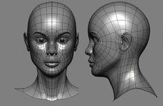 female 3D head edge loops - Google Search