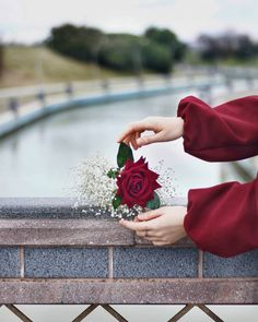 Image may contain: one or more people, flower and outdoor Hand Photography, Photography Poses Women, Beautiful Flowers Wallpapers, Cute Wallpapers, Hands Holding Flowers, Hand Holding, Flower Phone Wallpaper, Iphone Wallpaper, Flowers Instagram