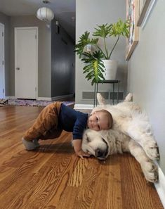 Things that make you go AWW! Like puppies, bunnies, babies, and so on. A place for really cute pictures and videos! So Cute Baby, Cute Kids, Adorable Babies, Little Babies, Fur Babies, Baby Kids, Baby Boy, Cute Funny Animals, Cute Baby Animals