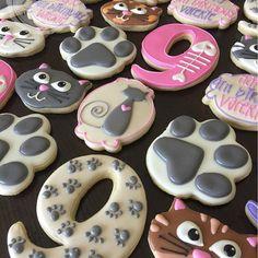 Happy 9th Birthday Valerie!!! #thefrostedswirlbakeshop #decoratedcookies #decoratedsugarcookies #designercookies #sugarcookies #cookies #cookieart #cookieartist #customcookies #royalicing #everythingcats #happybirthday #birthdaycookies #happy9thbday #catsofinstagram #cats_of_instagram #catslife #catslover #kansascity #kansascitymo #kansascitymissouri #kc #kcmo #shoplocalkc #madeinkc #igkansascity #igkc #handmadekc #816