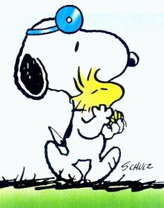 Dr, Snoopy! paging Dr. Snoopy
