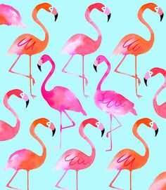 Margaret Berg Art: Flamingos: Blue