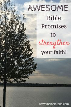 news bible verses that will help strengthen your marriage