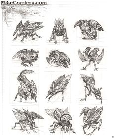Character and Creature Design Notes: Proper Use of Reference and Anatomy regarding Creature Design - Part Two