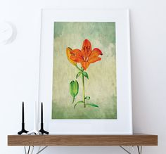 Asiatic Llly decor Lily art Asiatic Lily gift botanical print flower kitchen decor floral print floral wall decor wall art Canvas  #homedecor #WallArt #flowerprint #botanicalprint #floral #print #botanicalart #lilly #Floralprint #victorian #victorianprint #walldecor #homedecorinspiration #etsy #asiaticlilyprint #floralart #lilies #lilys #asiaticlilly #lilyprint #vintage