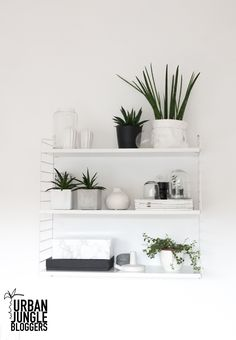 Urban Jungle Bloggers: My Plant Shelfie by @anutammiste
