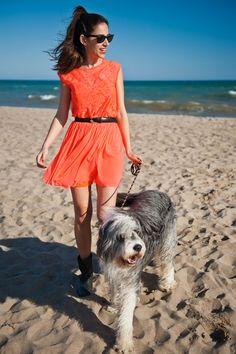 Want this dress and dog.