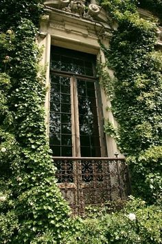Perfect window