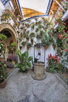 Patio de la calle San Basilio, 17.-  El patio sigue la tradición del anterior y sigue abierto a las gentes foráneas, sean nacionales o internacionales colaborando en la ciudad de Córdoba como Patrimonio de la Humanidad.