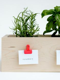 9 Ways to Decorate With Neon Paint : For just a hint of neon, try this fun (and oh-so functional!) herb box clips.