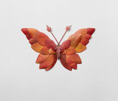 New Flower Arrangements Formed Into Butterflies And Moths By Raku Inoue. Montreal-based fashion designer and creative Raku Inoue continues his Natura Insects series with a focus on brilliantly colored moths and butterflies. Exotic Flower Tattoos, Exotic Flowers, Autumn Crafts, Nature Crafts, Leaf Crafts, Flower Crafts, Art Floral, Illustrator Design, Art Et Nature