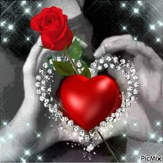 Most popular Picmix [p. 3 on Beautiful Love Pictures, Love You Images, Love Photos, Rose Flower Wallpaper, Good Morning My Love, Love Heart, Creations, Thankful, Simple