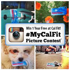 Snap - share - vote - win with our #MyCalFit Instagram contest. Snap a picture of your membership card, upload to Instagram using the #MyCalFit hashtag and you could win 1 year free membership. There's just one rule, you can't take it in of our club locations! Don't forget to make your profile public so we can view your photo! Have fun and good luck!