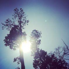 Make your life shine like the sun...