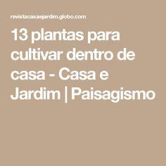 13 plantas para cultivar dentro de casa - Casa e Jardim | Paisagismo