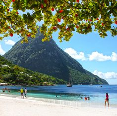 Sugar Beach overlooking the Pitons in St. Lucia. Going here in 2 months ⛱❤