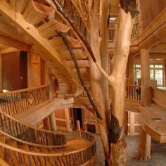Tree House Staircase, Ostego Lake, New York House Staircase, Wood Staircase,  Grand
