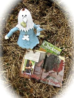 Wrote feature article for the national magazine, Chickens. Like, seriously. Feature Article, Nonfiction Books, Wings, Magazine, Christmas Ornaments, Holiday Decor, Projects, Log Projects, Blue Prints