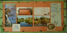 wildlife scrapbook layouts | Layout: Cameron Prairie National Wildlife ... | Scrapbooking Ideas