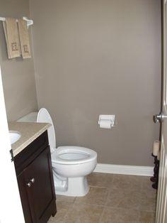 sherman williams aloof grey love for downstairs bathroom
