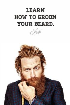 full thick dark beard beards bearded man men mens 39 style. Black Bedroom Furniture Sets. Home Design Ideas