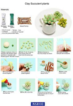 easy-stubby-fat-plants-en3