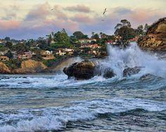 La Jolla, CA Photo by Brenda Romero Photography.