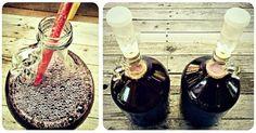 Boj o život: Pravdivý příběh o rostlince, co mě zachránila ze spárů rakoviny Elderberry Growing, Cancer, Nordic Interior, Mead, How To Make Homemade, World Recipes, Health Advice, Home Brewing, Holiday Recipes