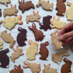 Baking Easter bunnies: recipes for shortcrust pastry, yeast dough and scram .- Osterhasen backen: Rezepte für Mürbeteig-, Hefeteig- und Rührteig-Hasen und über 70 Bilder Easter bunnies bake simple Easter bunny cookies with children - Biscuits Au Four, Cookies Et Biscuits, Sugar Cookies, Baking Biscuits, Baking Cookies, Cute Cookies, Easter Cookies, Easter Treats, Easter Cupcakes