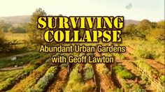 Urban Gardens: The Microspace. Geoff Lawton travels to Melbourne, Australia to meet Angelo an expert in the permaculture microspace garden.