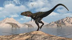 Nanotyrannus May Have Been Scarier Than T. Rex, And Here's Why | The Huffington Post