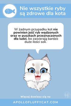 Koty uwielbiają ryby, ale czy wiesz, że nie wszystkie ryby są zdrowe dla kota? Dowiedz się więcej o rybach w diecie kota w moim artykule. Fluffy Cat, Blog, Diet, Blogging
