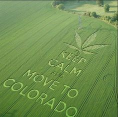 Move to Colorado!