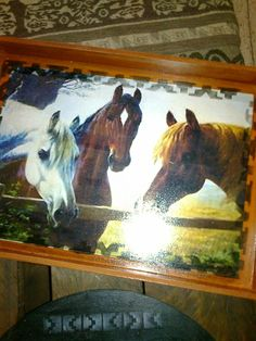 Horses, Country, Animals, Trays, Animales, Rural Area, Animaux, Horse, Country Music
