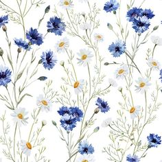 """Found it at Wayfair - Daisy Delight Removable 5' x 20"""" Floral Wallpaper"""