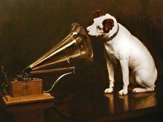 "Happy Larry ""His Master's Voice"" Vintage-Werbung auf Metal Deco Cinema, His Masters Voice, Deco Retro, Grunge, Vw Camper, Jack Russell Terrier, Stretched Canvas Prints, Vintage Ads, Vintage Posters"