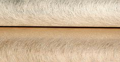 Silk spun wall covering Innovation in Wallcoverings
