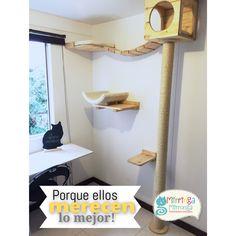 Gimnasio personalizado de Merlin y Dalí Crazy Cat Lady, Crazy Cats, Cat Gym, Cat Perch, Cat Shelves, Cat Houses, Small Cat, Pets, Storage