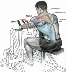 Body building, back exercise tips