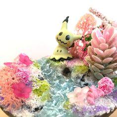 walk at the river __________   #Mimikyu #pokemon #diorama #pokemondiorama #mimigma #sharksnail River, Etsy, Christmas Ornaments, Holiday Decor, Home Decor, Dioramas, Pokemon Images, Miniature, Craft Gifts