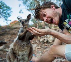 Selfies con animales, el arte que domina Allan Dixon Animal Pictures, Funny Pictures, Vida Animal, Dr Dolittle, Funny Animals, Cute Animals, Pub Vintage, Best Selfies, Montage Photo