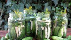 Twarde i chrupiące ogórki kiszone Pickles, Cucumber, Zucchini, Vegetables, Food, Essen, Vegetable Recipes, Meals, Pickle