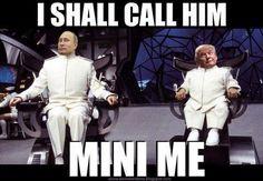 Putin on Trump: I shall call him Mini Me Political Satire, Political Cartoons, Funny Politics, Political Articles, Cartoon Memes, Truth Hurts, Mini Me, Funny Cute, Hilarious