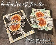 It's Day 2 of the Painted Harvest Bundle Sneak Peek and I have two Thank You Cards in Traditional Sunflower Colors. See details at Stampin' Hoot!